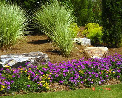 About Landscape Design Woodstock Roswell Alpharetta Canton Ga